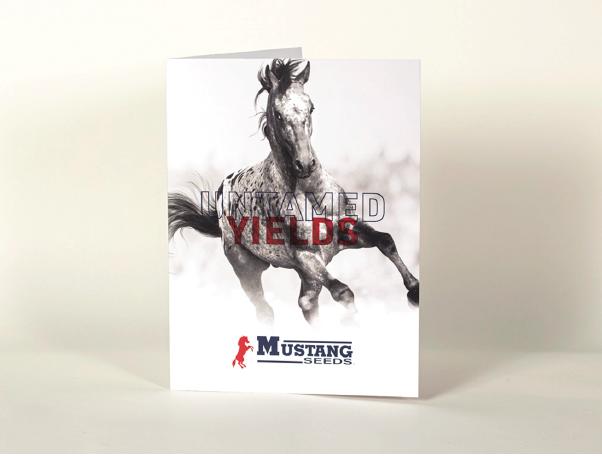 MustangSeeds-01
